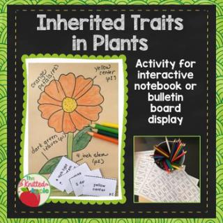 Inherited Traits in Plants (Freebie) - Homeschool Freebies ...