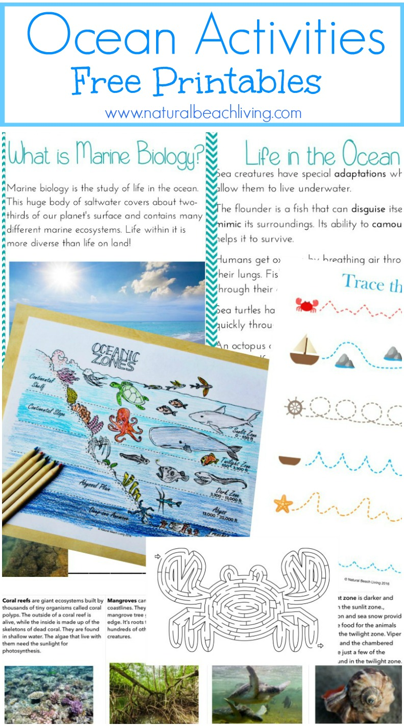 It's just a graphic of Crazy Free Printable Ocean Worksheets